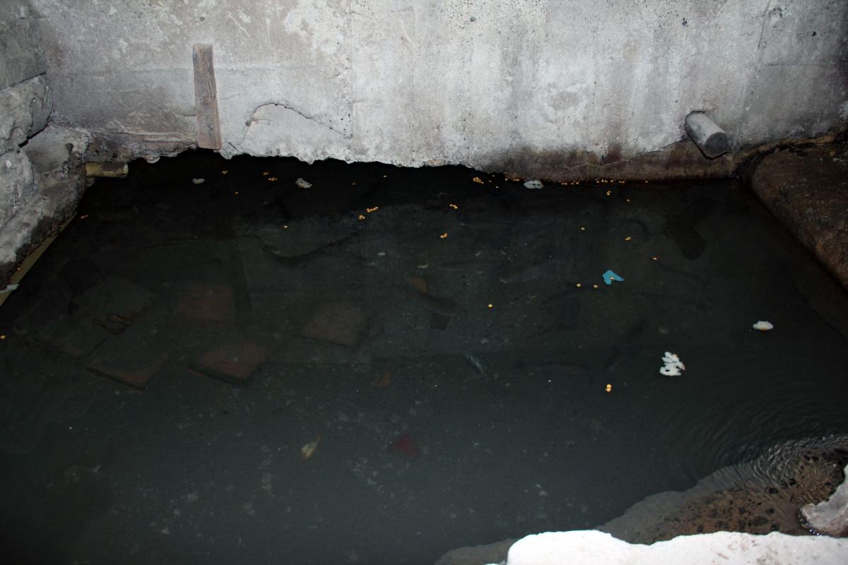 Marangoz atölyesine alabalık havuzu yaptı